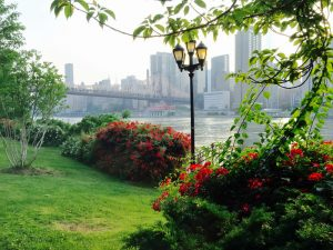 Roosevelt Island – The best place to elope in New York _02w