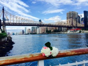Roosevelt Island - The best place to elope in New York _03w