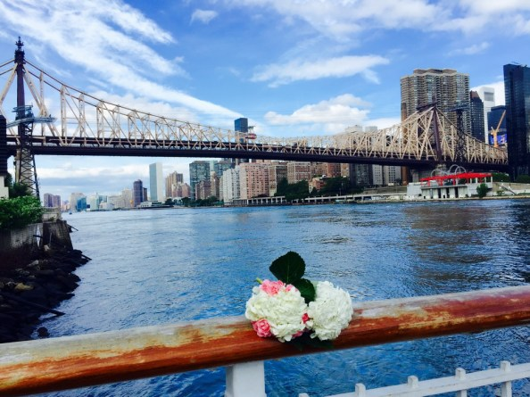 Roosevelt Island – The best place to elope NY