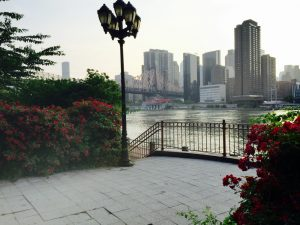 Roosevelt Island – The best place to elope in New York _10w