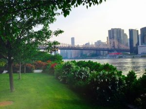 Roosevelt Island – The best place to elope in New York _11w